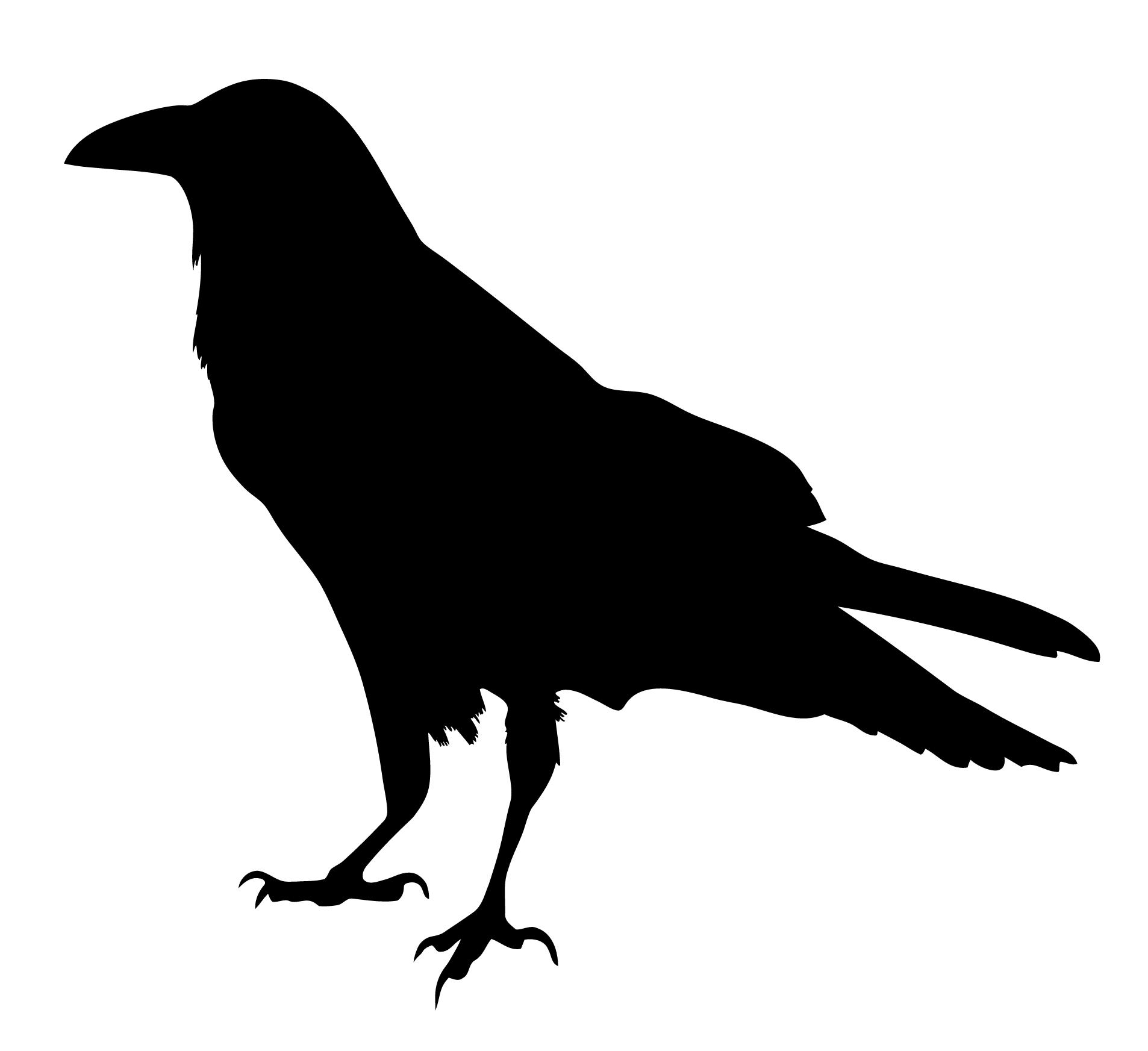 Ranting Ravens